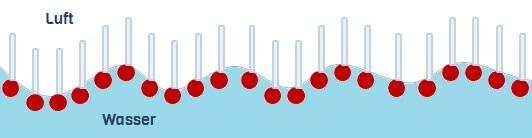 Streichholzmodell: Tenside an der Wasseroberfläche