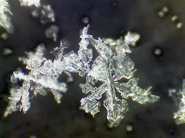 Schnee-Kristalle unter dem Mikroskop