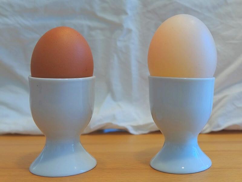 """Experiment 1: Das nackte Ei ist grösser als das Vergleichs-Ei mit Schale."""", Bildunterschrift: """"Das 'nackte' Ei rechts ist grösser als das Vergleichs-Ei mit Schale links!"""