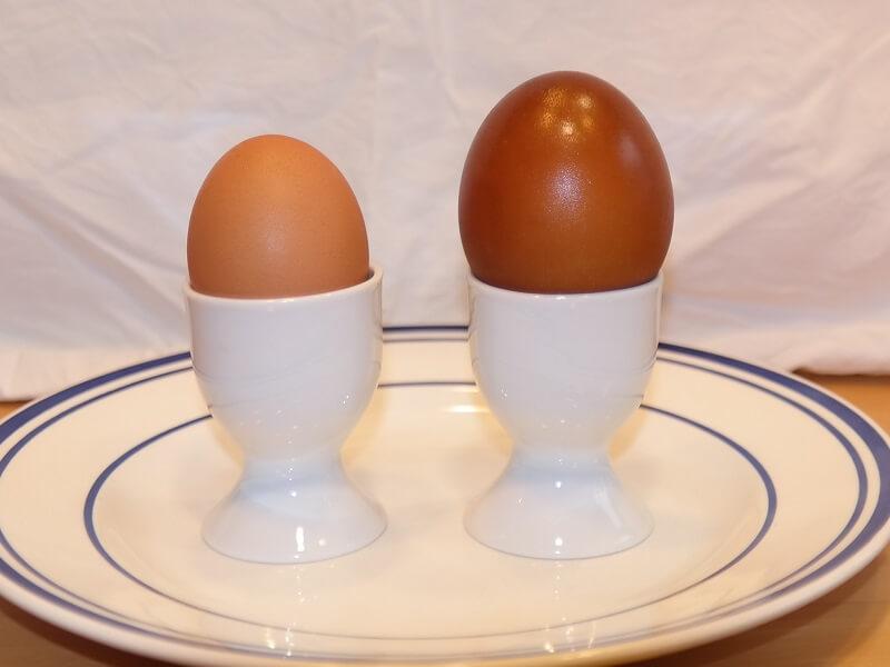 Das 'nackte' Ei ist wieder gross und prall.