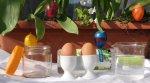 Osmose mit Ei : Experiment zu Ostern