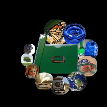 Keinsteins Kiste