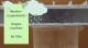 Wetter-Experiment: Regen machen im Glas