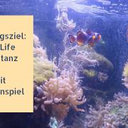 Ausflugstipp: Sea Life Center Konstanz - mit Gewinnspiel